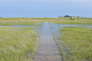 The Spit Scituate - South Shore Trails