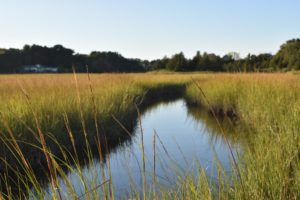 Driftway Scituate - South Shore Trails